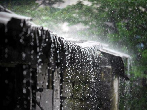 Mơ thấy mưa có ý nghĩa gì và nên đánh con xổ số nào