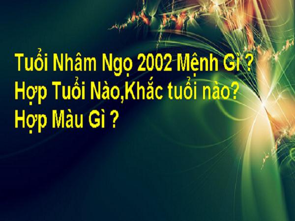 Sinh năm 2002 mệnh gì?
