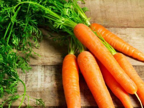 Giải mã giấc mơ thấy củ cà rốt điềm gì – Đánh con số nào