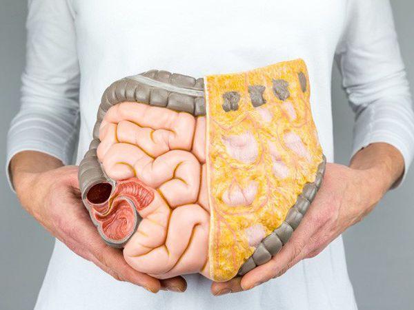 Mơ thấy nội tạng là điềm gì, thử vận may với con số nào?