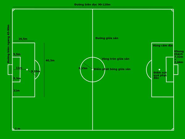 Diện tích sân bóng đá 11 người theo tiêu chuẩn FIFA là bao nhiêu